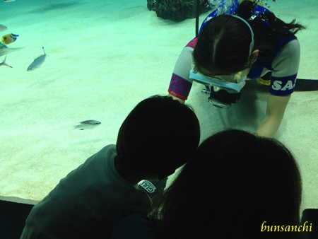 サンシャイン水族館②