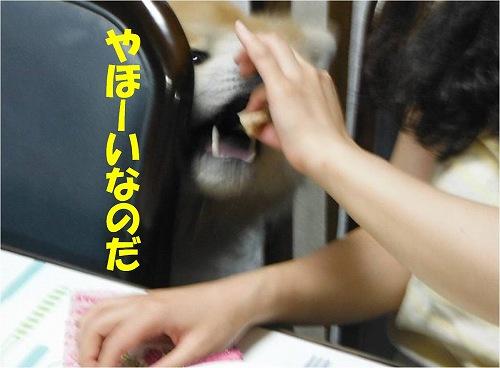 s-140929-3.jpg