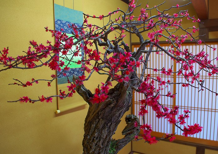 14-2-14-1盆梅祭・大倉公園