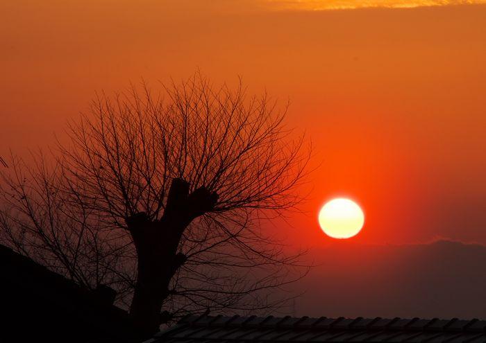 14-4-11-1夕陽