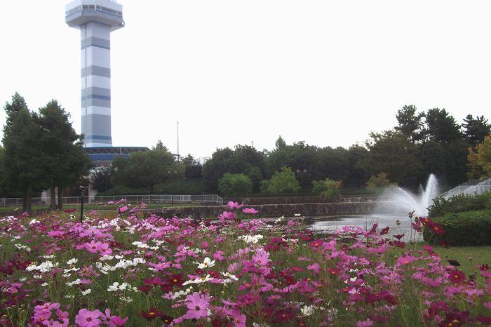 14-9-25-1木曽三川公園(海津)