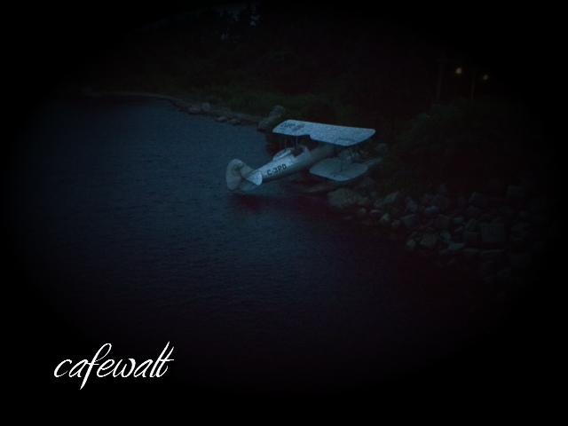 インディ・ジョーンズ 飛行機 ロストリバーデルタ
