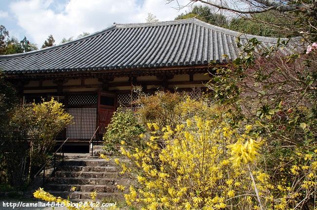 0329futaiji-3.jpg