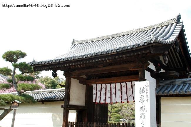 0329hokkeji-11.jpg