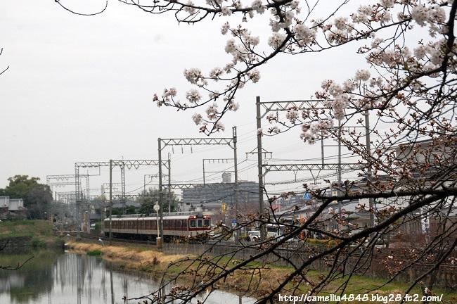 0329kouriyama-9.jpg