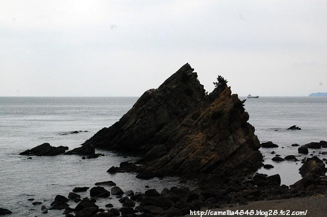 0405-tomogashima-11.jpg