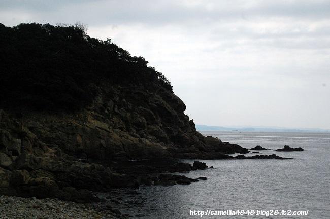 0405-tomogashima-12.jpg