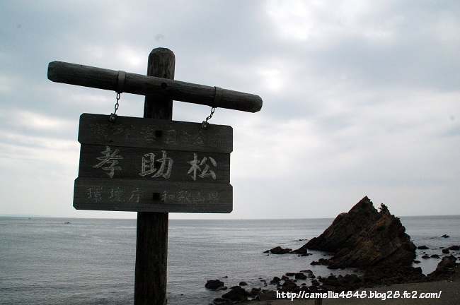 0405-tomogashima-13.jpg