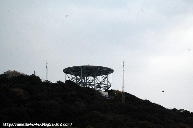 0405-tomogashima-2.jpg