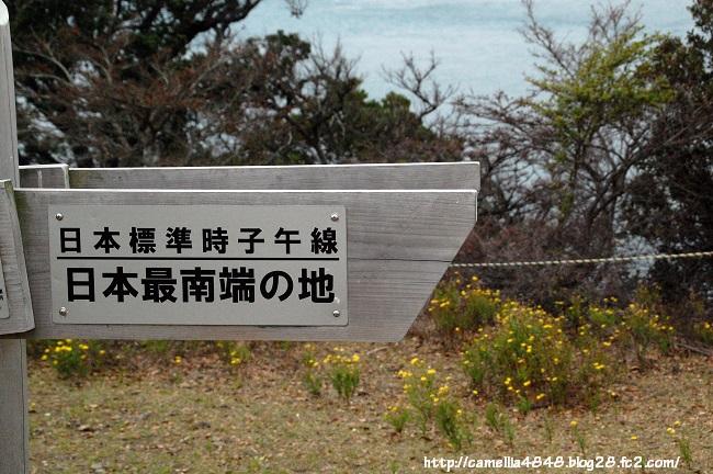 0405-tomogashima-7.jpg