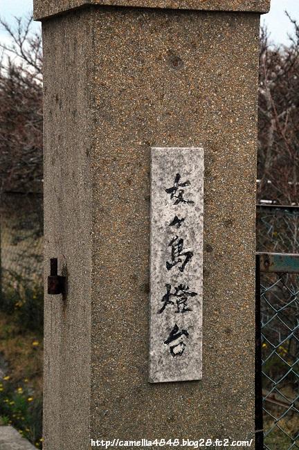 0405-tomogashima-9.jpg