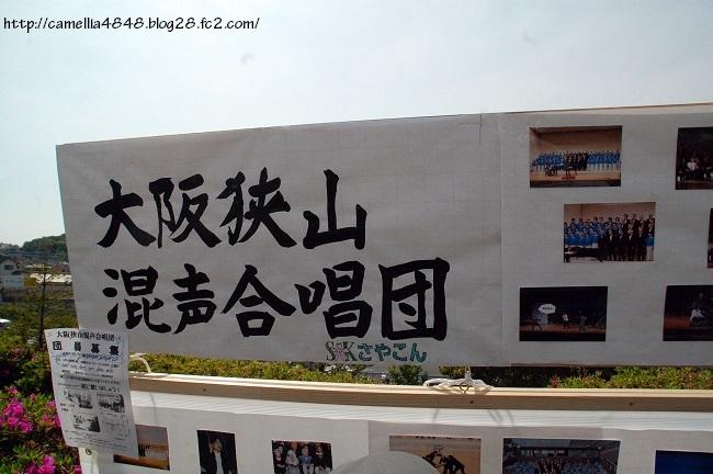 0427sayamaikematsuri-3.jpg