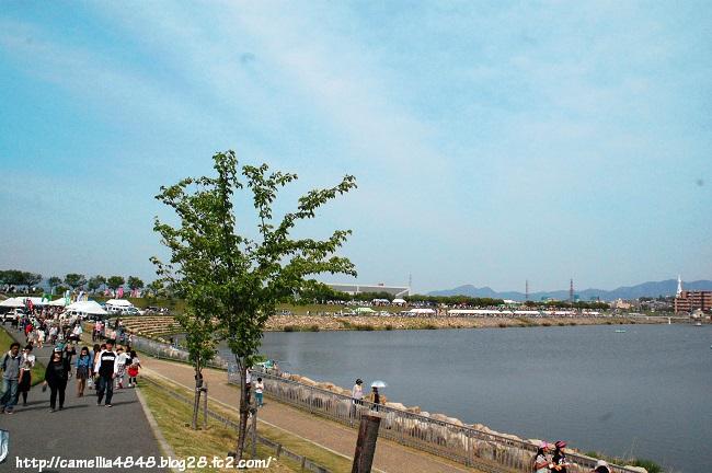 0427sayamaikematsuri-8.jpg