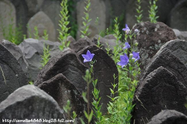 0614gangouji-4.jpg