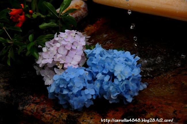 0614gangouji-6.jpg