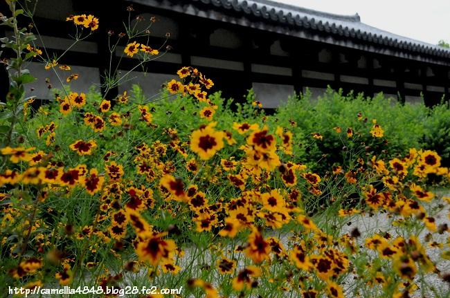 0614gangouji-8.jpg