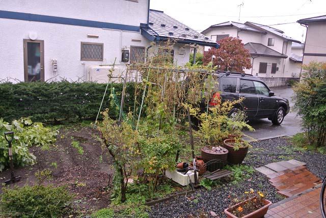 2014_10_14_03.jpg
