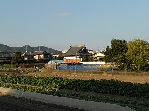 DSCN5606.jpg