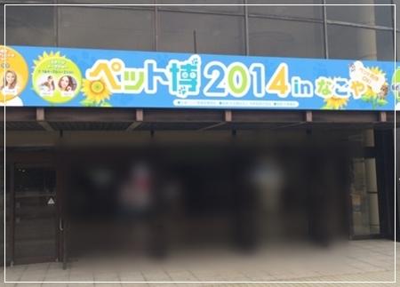 20140721.jpg