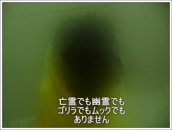 P1020950s1.jpg