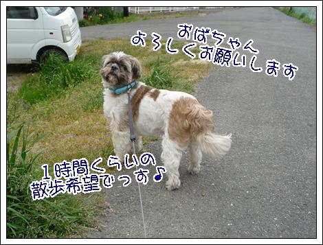 P1030712_1.jpg