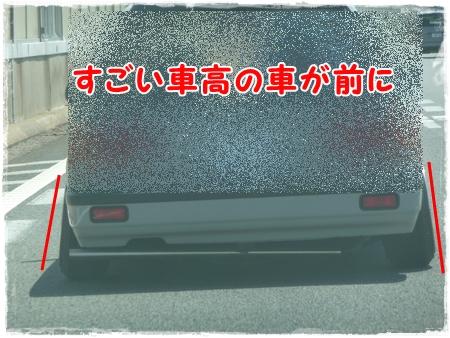 P1040482_1.jpg