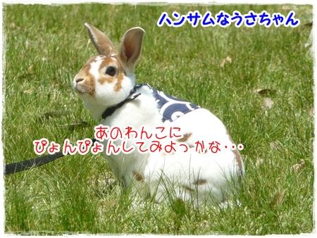 P1040503_1.jpg