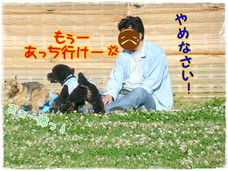P1040700_2.jpg