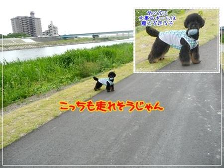 P1050350_3.jpg