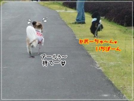 P1050366_1.jpg