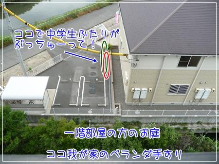 P1050409_1.jpg