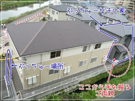 P1050410_1.jpg