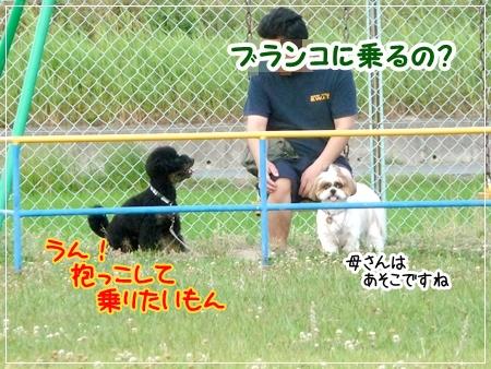 P1050438_1.jpg