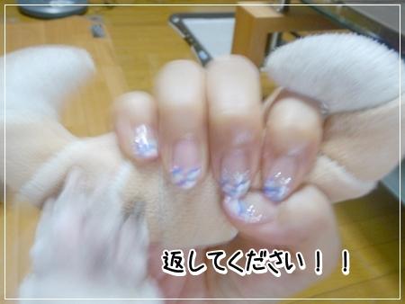 P1060114_1.jpg