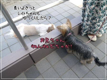 P1060151_1.jpg