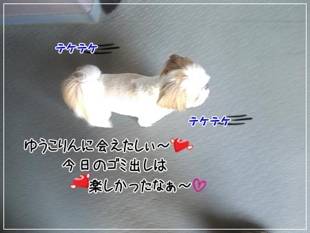 P1060155_1.jpg