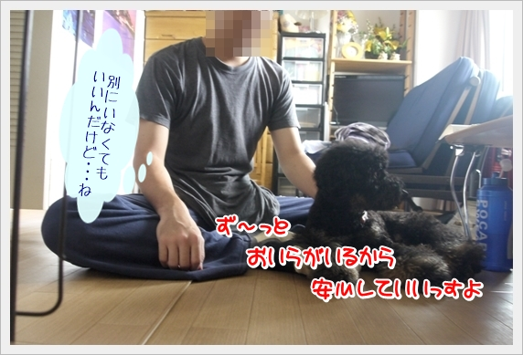 P1060854_1.jpg