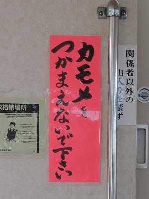 20140915-17.jpg