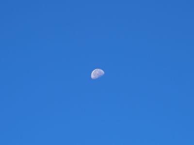 PA140128luna.jpg
