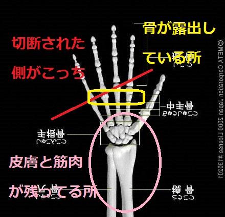 hand_frame.jpg