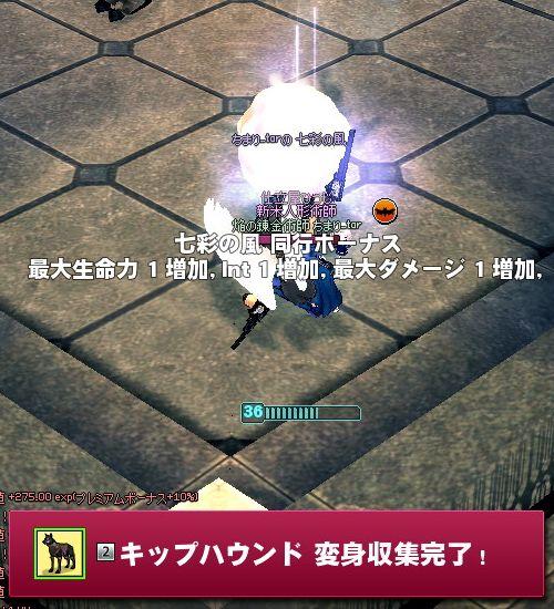 20140707012.jpg