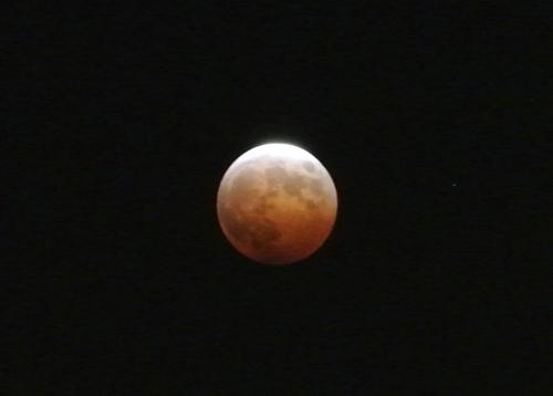 20141008Lunar_eclipse_Misato-12.jpg