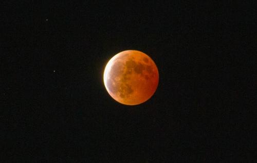 月とったどー