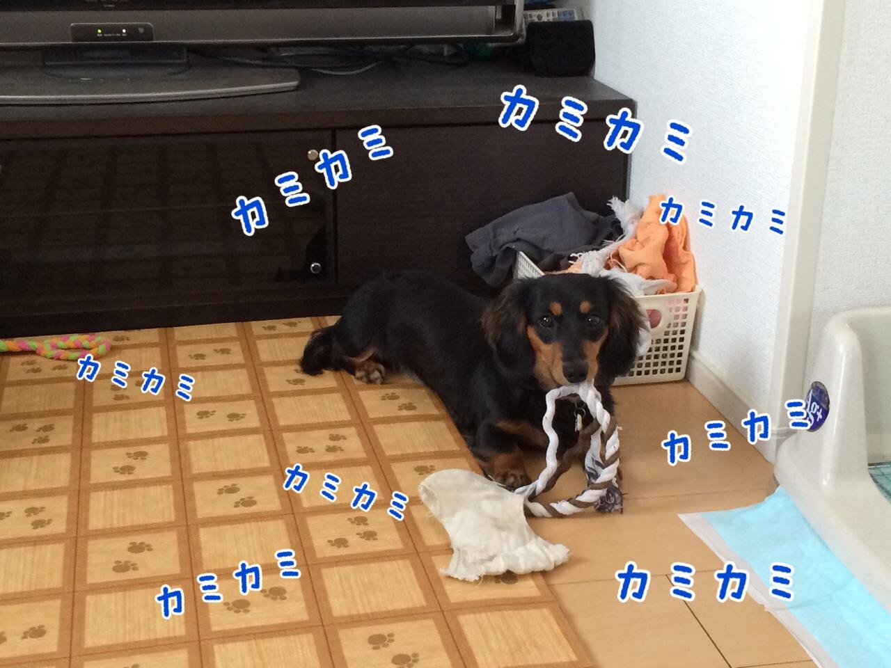 fc2blog_201407302325540f4.jpg