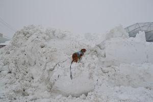 001雪山2