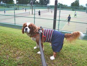 004テニス
