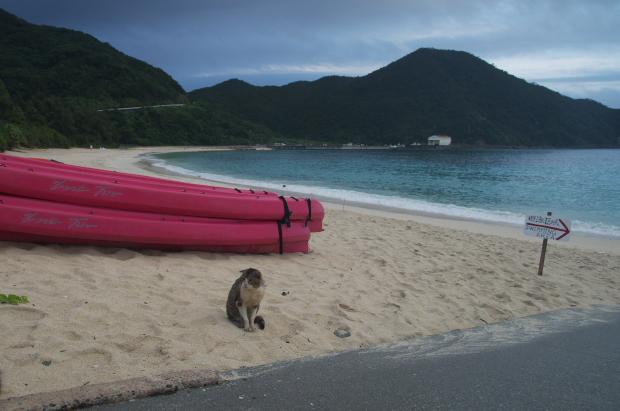 tokashiki 海辺