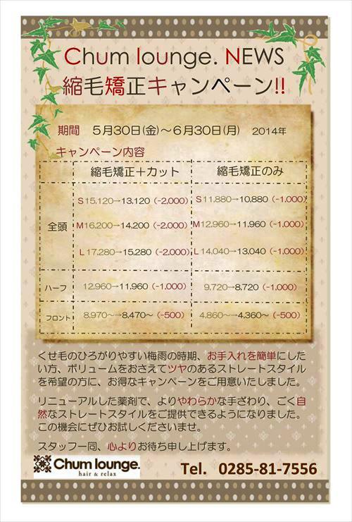 2014キャンペーン案内_01