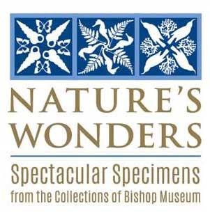 ビショップ博物館 自然界の不思議展-1409