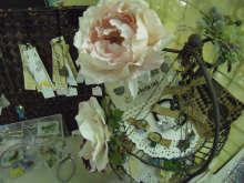 chuwa (ちゅわ)のブログ-小谷タビウサchuwa